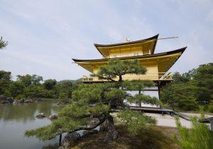 Kinkaku-ji Image-1