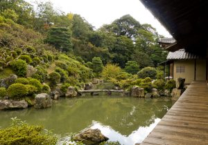 Japanese Garden in the Lecture Hall