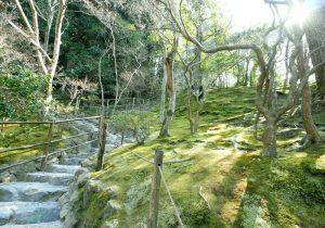 Ginkakuji Garden Image