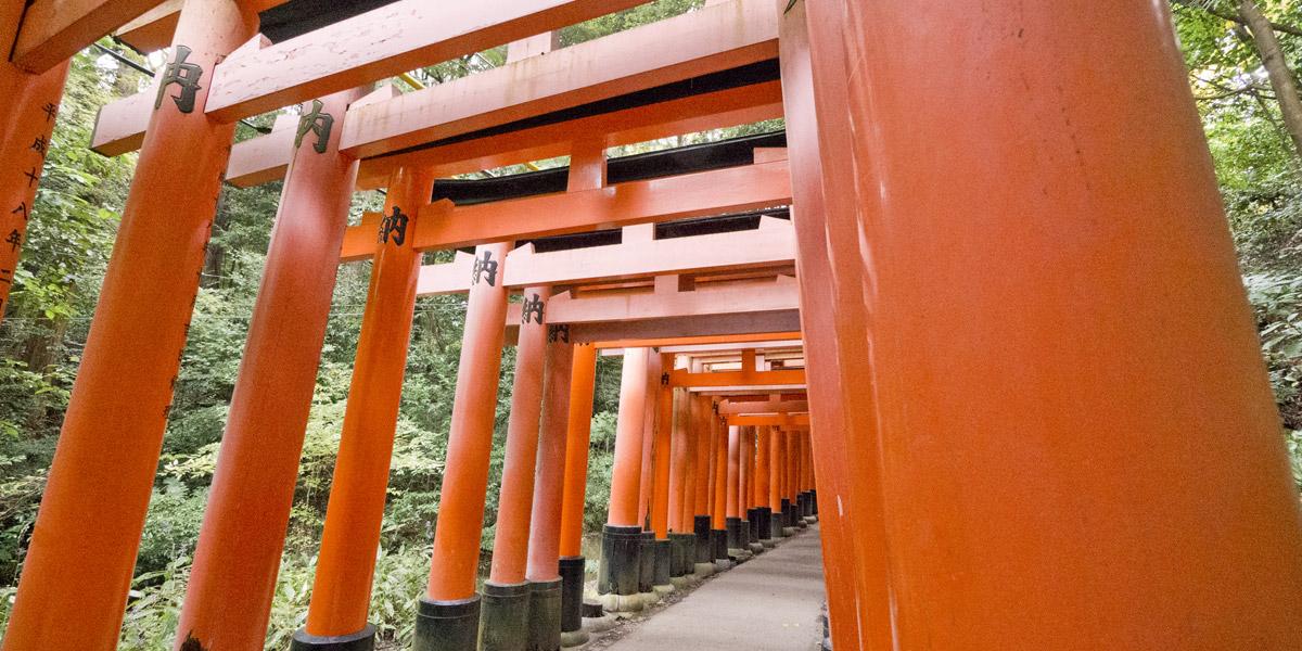 Fushimi Inari Featured Image