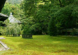 Shorenin Garden 2 Image