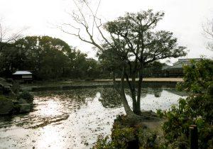 Ingetsu-chi Pond Image