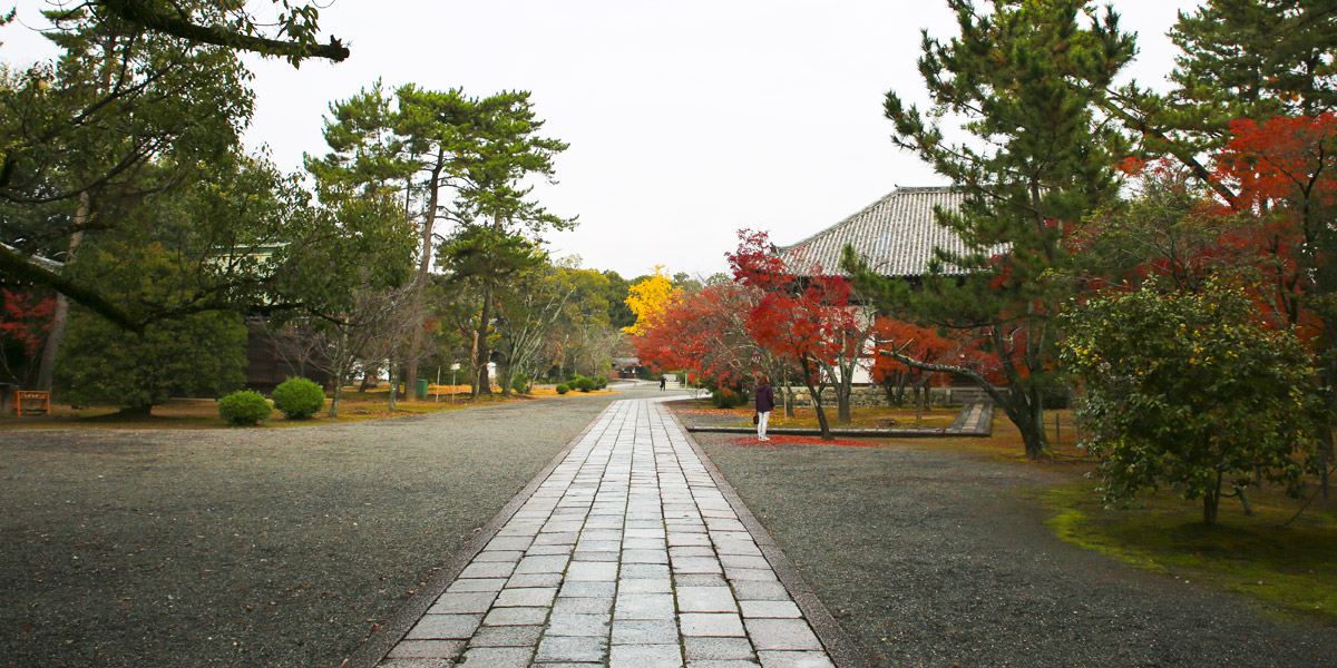 Koryuji Temple Header Image